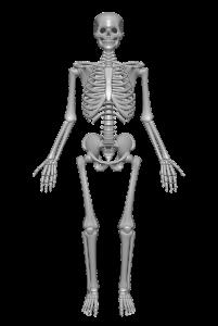 Osteoporoza: przyczyny, objawy, leczenie